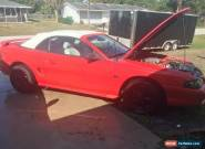 1994 Ford Mustang GT Convertible 2-Door for Sale