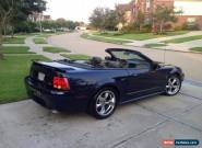 2001 Ford Mustang SVT Cobra Convertible 2-Door for Sale