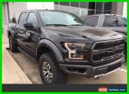 2017 Ford F-150 Raptor for Sale