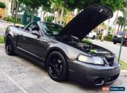 2003 Ford Mustang SVT Cobra Convertible 2-Door for Sale