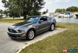 Classic 2014 Ford Mustang Pony Package for Sale