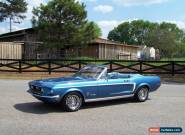 1968 Ford Mustang GT Options for Sale