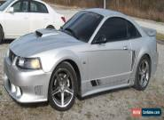 2004 Ford Mustang GT S281 for Sale