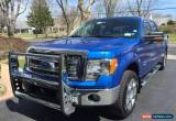 Classic 2013 Ford F-150 XLT for Sale