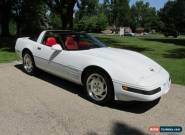 1994 Chevrolet Corvette for Sale