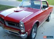 1965 Pontiac GTO gto for Sale