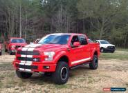 2017 Ford F-150 Shelby for Sale