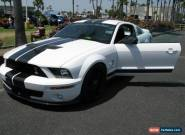 2007 Shelby GT500 for Sale
