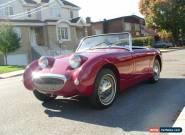 1960 Austin Healey Sprite for Sale