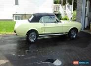 1967 Ford Mustang GT for Sale