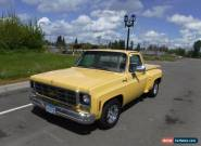 1977 Chevrolet Other Pickups Silverado for Sale