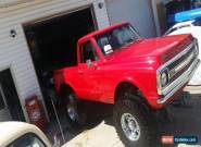 1969 Chevrolet C/K Pickup 1500 for Sale