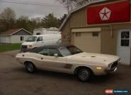 Dodge: Challenger RALLYE for Sale