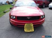 2005 Ford Mustang base for Sale