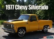 1977 Chevrolet C-10 2 Door for Sale