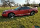 Classic 2001 Ford Mustang GT Convertible 2-Door for Sale