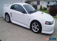 Ford: Mustang Stage 1 for Sale