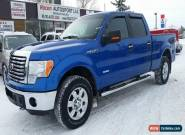 2012 Ford F-150 for Sale