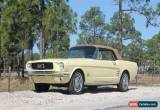 Classic 1966 Ford Mustang Convertible With A/C for Sale