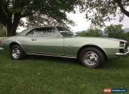 1967 Chevrolet Camaro Rally sport for Sale