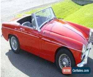 Classic MG: Midget for Sale