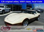 1981 Chevrolet Corvette Base Coupe 2-Door for Sale