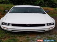 2005 Ford Mustang Coupe for Sale