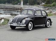 1959 Volkswagen Beetle - Classic for Sale
