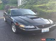 2001 Ford Mustang GT Bullitt for Sale