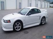 Ford: Mustang ROUSH for Sale