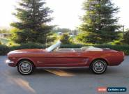 1966 Ford Mustang Convertible for Sale