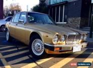 Jaguar XJ6 4.2 5 speed Manual Aust delivered 1983 series 3  Gold for Sale