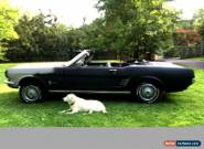1966 Ford Mustang 66 for Sale