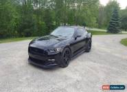 2015 Ford Mustang GT Super Charged for Sale