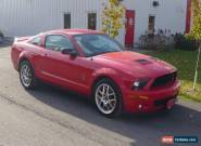 Ford: Mustang GT-500 for Sale