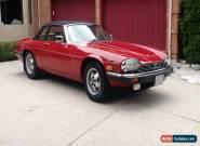 Jaguar: XJS XJSC CABRIOLET for Sale