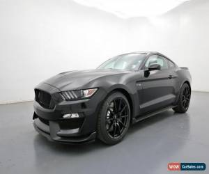 Classic 2017 Ford Mustang SHELBY for Sale