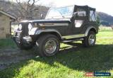 Classic 1977 Jeep Other for Sale