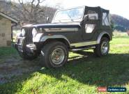 1977 Jeep Other for Sale