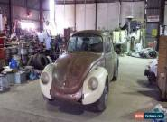 74 beetle project for Sale