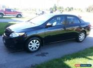 Toyota : Corolla LE for Sale