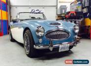 1966 Austin Healey 3000 for Sale
