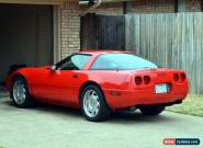 1995 Chevrolet Corvette Base Hatchback 2-Door for Sale