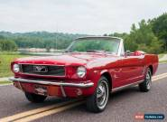 1966 Ford Mustang C-Code Mustang for Sale