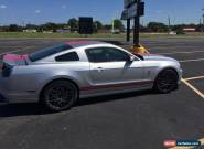 2014 Ford Mustang GT500 for Sale