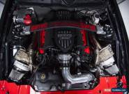 2014 Ford Mustang Hellanor for Sale