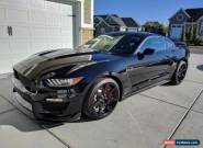 2017 Ford Mustang Shelby GT350R Coupe 2-Door for Sale