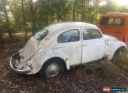 VW 1958 beetle RARE for Sale