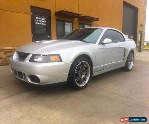 Classic 2003 Ford Mustang Cobra for Sale