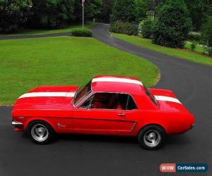 Classic 1965 Ford Mustang SHELBY LOOK for Sale